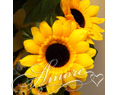 Sunflower Silk Garland 6 ft